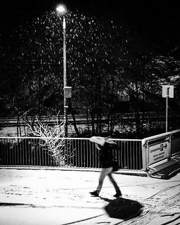 iPhone photo from today. Snowing in Oslo again. #snow #norway #norge #norgejpg #oslo #nrkøstlandssendingen #nrkostlandssendingen #visitoslo #brynsengfaret #winter #wet #blackandwhitephotography #blacknwhite_perfection #streetsofoslo #oslokameraklubb #bnw