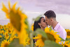 P&W (57 de 71) (Grand Prisma Fotografia) Tags: casamento amor sessão romântico girassol