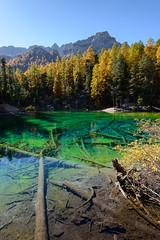 Lac Vert (renan4) Tags: landscape alps europe travel trip lake mountains autumn nikon d800 renan4 renan gicquel névache france italia vert larchs mélèze