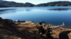 2017-11-14_06-11-24 (lukeester) Tags: black lake dead trees blue beach hills clouds green sky paradise clear rock