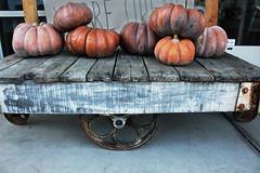 Pumpkin Time (skipmoore) Tags: penngrove pumpkins squash cart