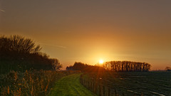 Path To The Sun (Alfred Grupstra) Tags: nature sunset ruralscene sun landscape sunlight sunrisedawn dusk outdoors sky tree summer scenics morning field agriculture dawn meadow grass farm 957