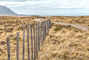 On the road (julien.ginefri) Tags: argentina argentine patagonia patagonie america latinamerica southamerica laguna viedma road ruta elcalafate elchaltén parquenacional nationalpark losglaciares