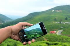Nuwara Eliya - Sri Lanka (Vina@Graphy) Tags: samsung mobile sri lanka srilanka hill hills mountains green hand tea road mist