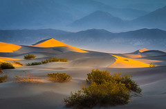 Shapes of sand (andreassofus) Tags: deathvalley dunes sanddunes mesquiteflatsanddunes nevada sunrise light shadows lines shapes mountains mountainscape blue abstract travel travelphotography outdoor nopeople summer summertime desert
