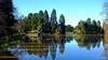 Tredegar Country Park Lake (Fotomondeo) Tags: tredegarpark lake refelections reflejos fujifilmxm1 wales