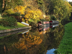 Reflections of autumn (jeff.dugmore) Tags: england uk europe midlands southstaffordshire kinver autumn canal waterways water barge boat narrowboat leaves trees green yellow gold reflection grass red nature outside outdoors walking hike towpath foliage olympus