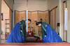 2017. Suwon. (Marisa y Angel) Tags: corée 2017 suwon corea rok southkorea republicofkorea hwaseonghaenggung korea palaciodehwaseonghaenggung hwaseonghaenggungpalace