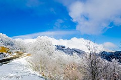 Snow landscape!