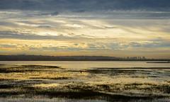 Rainy Sunrise (Waldemar*) Tags: usa california sandiego pacificbeach crownpoint missionbay estuary sunrise rain clouds fall autumn nikon d800e zeiss milvus 50mmf14 sky