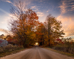 color tunnel (Christian Collins) Tags: canoneos5dmarkiv ef24105mmf4lisusm colortunnel backroad fall autumn trees gravel gravelroad west sunset atardecer puestadelsol uphill wideangle 4x5 8x10 october 2017 michigan cadillac mi upnorth