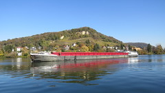 Grenzacher Horn, 1.11.17 (ritsch48) Tags: birsfelden basellandschaft hafen rhein grenzach deutschland grenzacherhorn hornfelsen binnenschiff surcouf