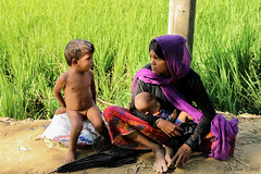 Rohingya Refugees (Galib Emon) Tags: rohingya refugees grass green colors children mother women crimesagainsthumanity rohingyarefugeecrisis rakhinestate humanrights savethechildren homeless rohingyarelief rohingyawaitingforrelief rohingyapeople influx stoptheviolenceagainsttherohingyainmyanmar crossedtheborderintobangladesh aidforrohingya unchiprangrohingyarefugeescamps unchiprang ukhiya teknaf coxsbazar chittagong bangladesh rohingyarefugee street streetphotography people aidsearching myanmar burma violations militarycrackdown arakanrohingya salvationarmy rohingyarefugeeinbangladesh un unhcr unicef help genocide rohingyaissue rohingyarapevictim rohingyawomengangrapedbymyanmarsoldiers 1millionrohingyarefugeesinbangladesh refugeecamp photojournalism explore global world travel hopeless womenrights september 2017 galibemon unchiprangmakeshiftcamp naturallight explorebangladesh exploreworld curious rohingyafamily rohingyainflux