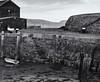 Lyme Regis harbour (Tim Ravenscroft) Tags: harbour harbor lymeregis hasselblad hasselbladx1d monochrome