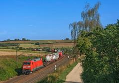 DB 152 156 (maurizio messa) Tags: br152 es64f4 siemens mau bahn ferrovia freighttrain fret cargo bayern germania germany guterzuge nikond7100 treni trains railway railroad