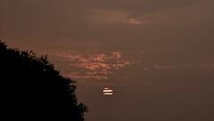 Morgenhimmel; Bergenhusen, Stapelholm (132) (Chironius) Tags: stapelholm bergenhusen schleswigholstein deutschland germany allemagne alemania germania германия niemcy morgendämmerung sonnenaufgang morgengrauen утро morgen morning dawn sunrise matin aube mattina alba ochtend dageraad zonsopgang рассвет восходсолнца amanecer morgens dämmerung himmel sky ciel cielo hemel небо gökyüzü wolken clouds wolke nube nuvole nuage облака rot