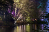 Enchanted Forest 2017 (DMeadows) Tags: dmeadows davidmeadows davidameadows enchanted forest light night lights lit wood woodland event scotland water colour faskally forestry commission walk color reflection pitlochry perthshire tree trees oir an uisge show 2017 lighting illuminations illumination illuminated illuminate tamronspaf90mmf28dimacro tamronspaf90mmf28divcusdmacro