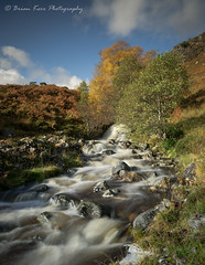 Autumn Flow (.Brian Kerr Photography.) Tags: scotland scottishlandscapes scottish scotspirit scottishhighlands scottishlandscape scotspines birches landscapephotography landscape photography photo sony a7rii outdoor outdoorphotography opoty onlandscape nature naturallandscape natural briankerrphotography briankerrphoto tree rivercannich glencannich stream river burn rocks availablelight autumn water sky forest rock waterfall