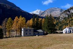 Cavaglia village (annalisabianchetti) Tags: switzerland svizzera autumn autunno alps mountains montagne beauty trees village borgo paesaggio landscape