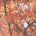 嵐 画像97