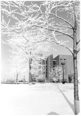 Library-Learning Center, now David A. Cofrin Library, in winter