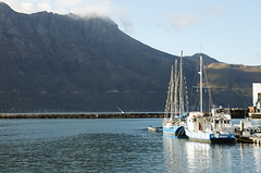 03 Cape of Good Hope 6 (Mel Vázquez) Tags: southafrica sudáfrica