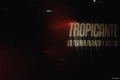 ©AnaViotti_Baile Tropicante-14