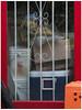 Behind Bars (prima seadiva) Tags: 22nd bucket cherub sculpture window doorway bars putto putti