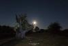 Te pillé!! (Javibeje) Tags: urbasa arbol tree navarra nocturna noche luna moonlight night nightscape javier bejarano nikon d7200 tokina 1116dxii