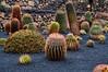 Jardin De Cactus, Lanzarote (kendo1938) Tags: guatiza lanzarote spain esp jardindecactus cactus cacti cactusgarden plants gardens ferocactus
