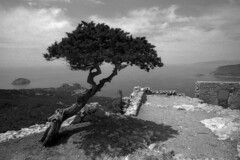 Monolithos - Rhodes - May 2017 (cava961) Tags: rhodes rodi monolithos landscape analogue analogico monochrome monocromo bianconero bw