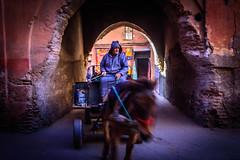 morroco-226.jpg (daviddalton) Tags: atlasmountains souk shopping medina morocco marrakech