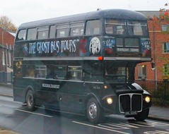 Necrobus Transport / Ghost Bus Tours . York . RML2624 NML624E . York . Tuesday 31st-October-2017 . (AndrewHA's) Tags: bus york necrobus tours aec routemaster park royal mnl624e rml 2624 sightseeing tour rain second hand london transport