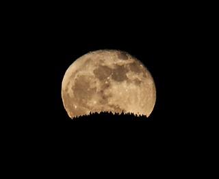 Moonrise - Waning Gibbous 99%