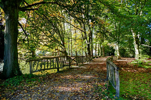Herbst im Park -– Autumn in the Park
