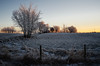 Morning Glory (L E Dye) Tags: fencefriday 2016 alberta canada d5100 frost ledye nikon sunrise prairie rural snow winter