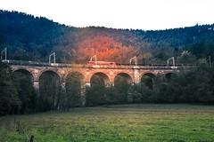 Borovnica - Jelen railroad viaduct (rlubej) Tags: notranjska railroad bridges trains colors