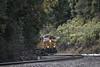 Peek a Boo (lennycarl08) Tags: burlingtonnorthernsantafe burlingtonnorthernsantaferailroad bnsf bnsf4981 gec449w glenfrazer stocktonsub martinez trains railroad ra