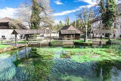Bistra - castle 'pond' (rlubej) Tags: notranjska castle lakes