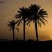 Sunset+in+Spain