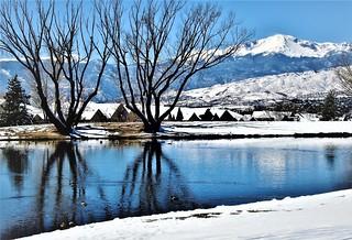 Winter wonderland...(Explored)