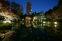 Water reflection@Waseda_Tokyo_09 (Ripple design) Tags: sony α7rⅱ ilce7rm2 bluemoment shinjyuku reflected sel1224g f4