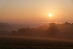 Lever de soleil brumeux (Excalibur67) Tags: nikon d750 sigma globalvision 24105f4dgoshsma paysage landscape brume brouillard mist fog levéedesoleil arbres trees nature ciel sky