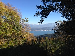 03 (emmess2) Tags: campiglia cinqueterre spezia autumn fall leaves