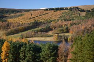 Errwood Reservoir, Peak District National Park, Derbyshire, England.
