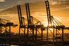 Barcelona sunrise (ulidolz) Tags: stimmung mood morning morgen eos5dmarkiv canon dawn dämmerung mist schiffe ships spanien spain barcelona hafen harbor sonnenaufgang sunrise