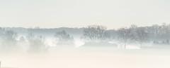 Morning fog... (w3inc / Bill) Tags: w3inc nikon d610 fog morning chestercounty