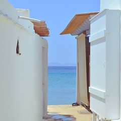 Greece, 2017 (A M H P h o t o g r a p h y) Tags: greece holidays summer personal wedding colourful mediterranean nature butterflies church sun photography dslr f14 symmetry abstract focus blur saturated portraits marriage couple newly weds rhodes tinos athens roadtrip family portrait plant shelves