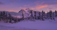 Winter Wonderland ( Mt Shuksan at frozen lake, Mt Baker Ski Area, WA) (Sveta Imnadze) Tags: mtshuksan mtbakerskiarea wa pacificnorthwest winter natuter landscape