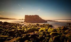 Green Rocks (Rohit KC Photography) Tags: beach rock sky vibrant edited rocks lightroom cannon cannon5dmarkii nature landscape sanfrancisco california canon24105mmf4l canon24105f4l halfmoonbay